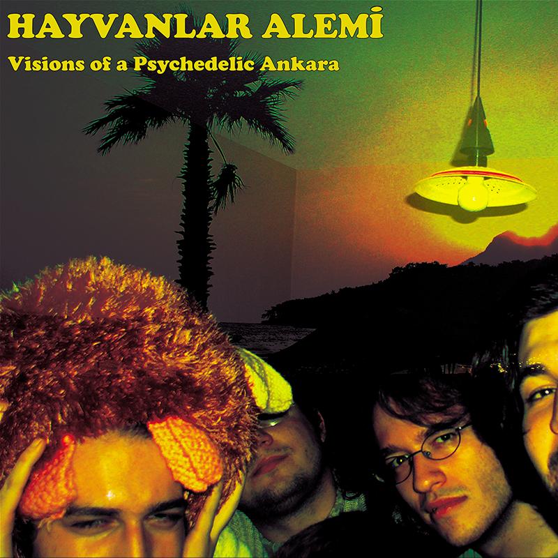 Hayvanlar Alemi - Visions of a Psychedelic Ankara 800