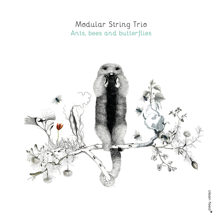 Modular String Trio - Clean feed